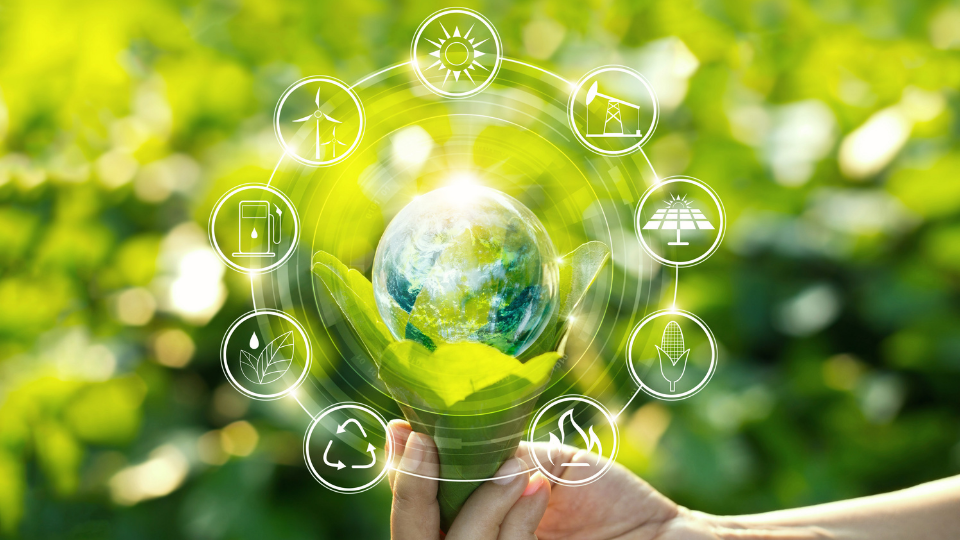 DGT #8 - Sustainability edition